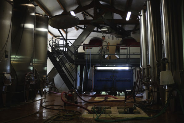Inside our winery